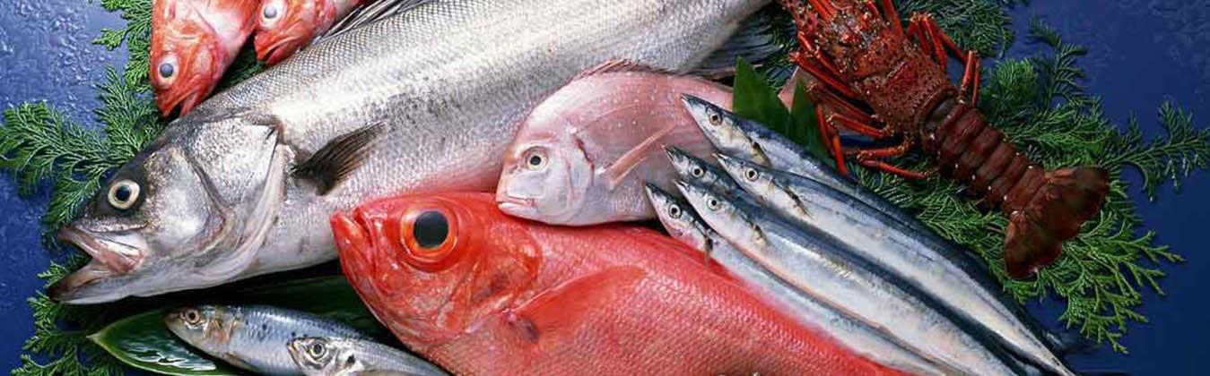 seafood_slider